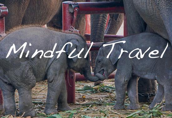 Mindful Travel-UL Homepage
