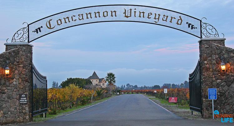 Concannon Vineyard Livermore, California, Uncontained Life Dead Breakfast