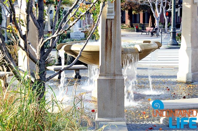 Lizzie Fountain Livermore CA