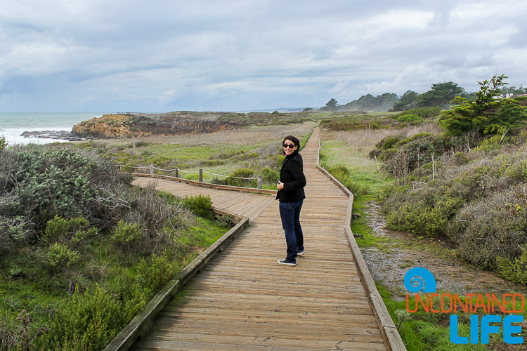 Cambria Photo Essay-135