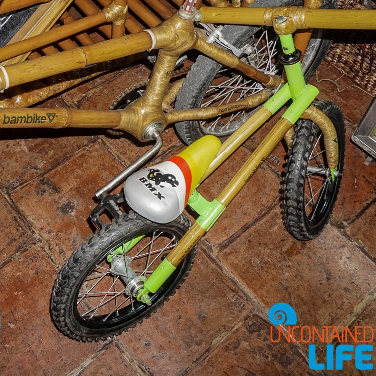 BMX Bambike Uncontained Life