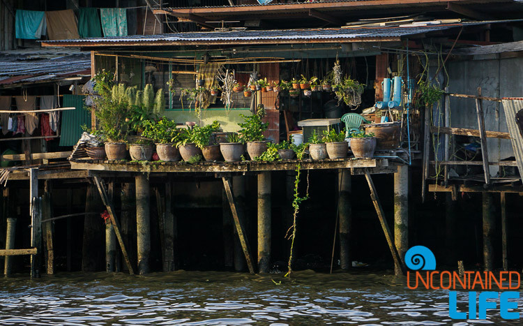 Chao Phraya River Waterfront Garden
