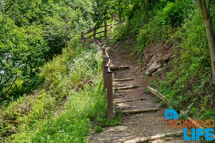 Trail, Off the Beaten Path in South Korea, Uncontained Life