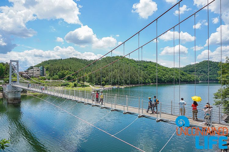 Sky Bridge, Off the Beaten Path in South Korea, Uncontained Life