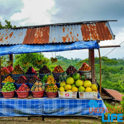 Bali Fresh Fruit Stand Indonesia