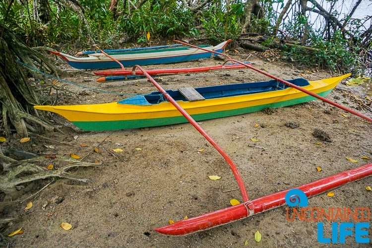 Outrigger Canoes, Mangrove Resort in Langogan, Palawan, Philippines, Uncontained Life