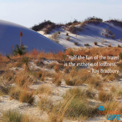 Ray Bradbury Quoto