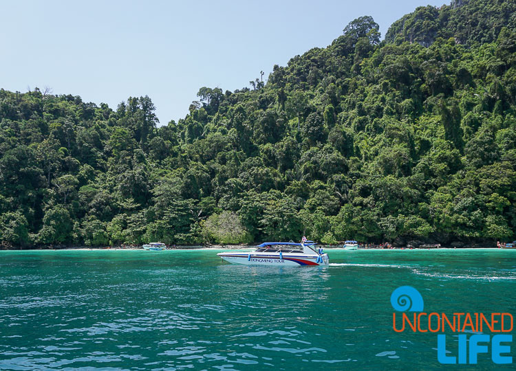 Phi Phi Islands, Phuket, Thailand, Uncontained Life