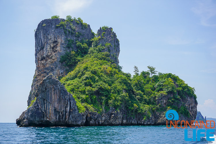 Blue World Safari, Phi Phi Islands, Phuket, Thailand, Uncontained Life