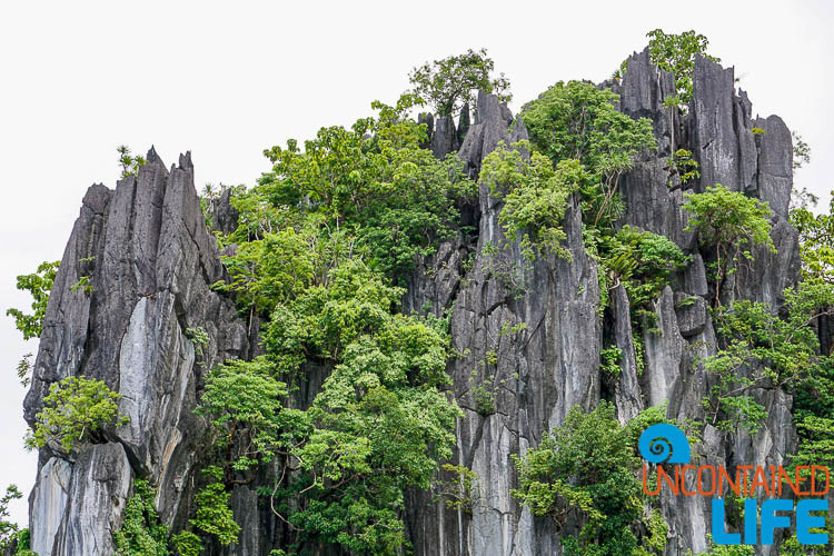 Limestone Cliffs, El Nido, Palawan, Philippines, Uncontained Life