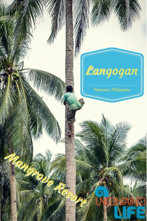 Mangrove Resort in Langogan, Palawan, Philippines, Uncontained Life
