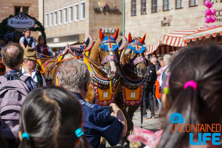 Horses, Beer, Parade, Altstadfest, Nuremberg, Germany, Uncontained Life