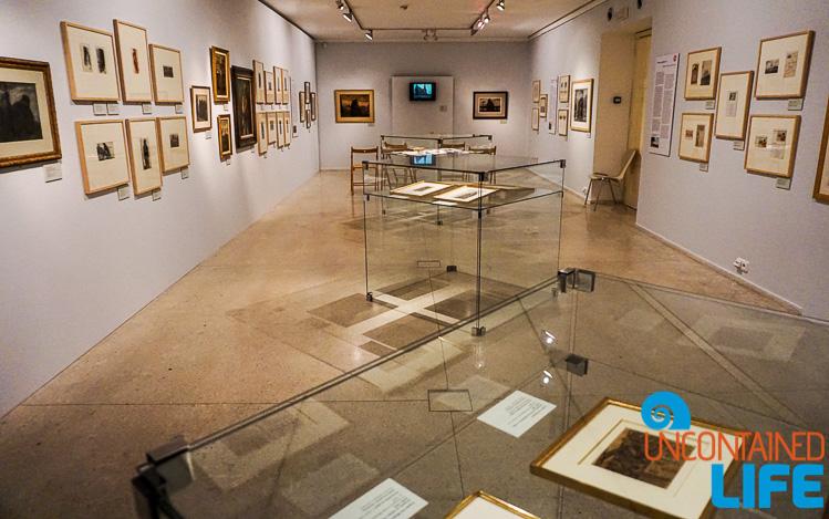 Robert Guttmann Gallery, Prague, Czech Republic, Uncontained Life
