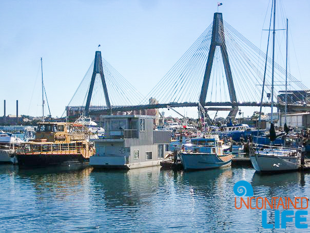 Anzac Bridge, Inexpensive Activities in Sydney, Australia, Uncontained Life