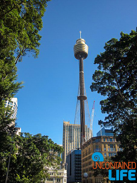 Sydney Tower, Inexpensive Activities in Sydney, Australia, Uncontained Life