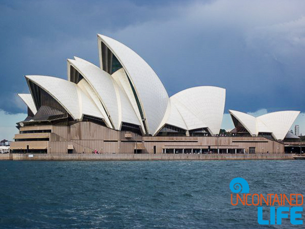 Sydney Opera House, Inexpensive Activities in Sydney, Australia, Uncontained Life