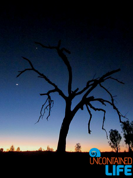 Sunset Silhouette, Uluru, Northern Territory, Active Adventures, Australia, Uncontained Life