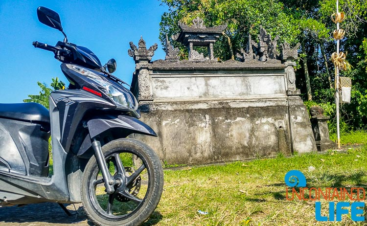 Renting a Scooter in Southeast Asia, Uncontained Life