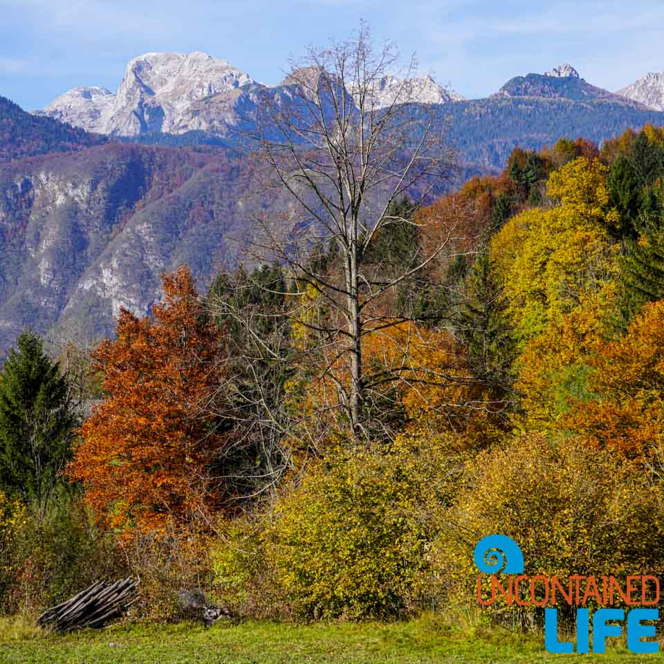 Hiking Mostnica Gorge, Slovenia, Uncontained Life, journeys, destinations
