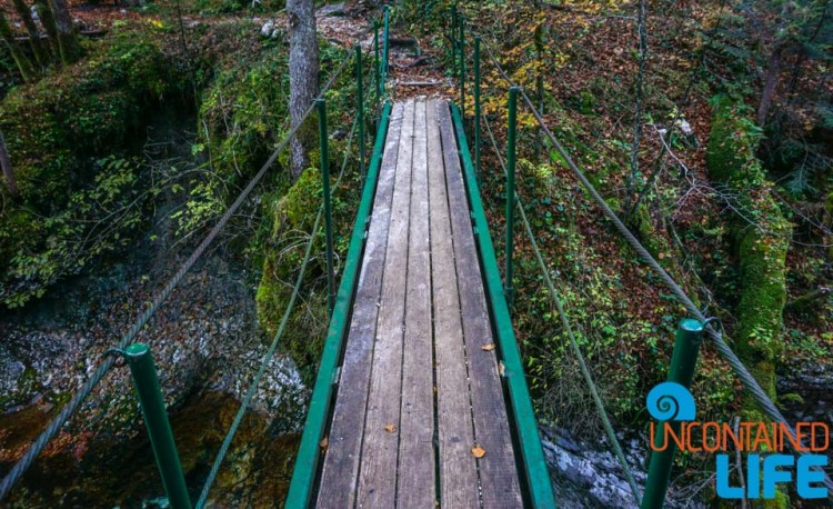 Footbridge, Hiking Mostnica Gorge, Slovenia, Uncontained Life