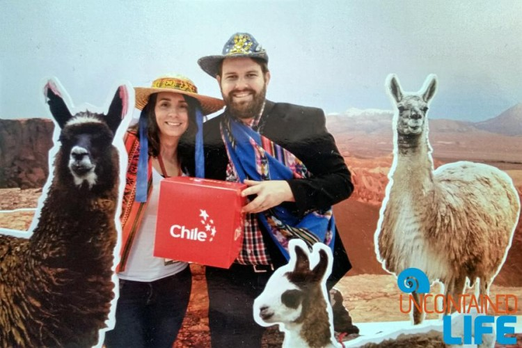 Chile, World Travel Market London, Llamma, Traveling as a Couple, Uncontained Life