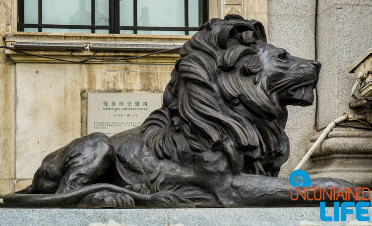 Lion Statue, 24 Hours in Shanghai, China, Uncontained Life