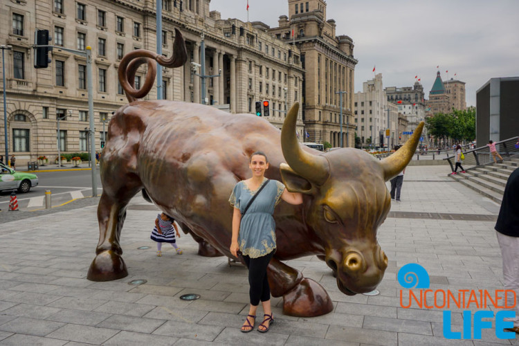 Bull Statue, 24 Hours in Shanghai, China, Uncontained Life