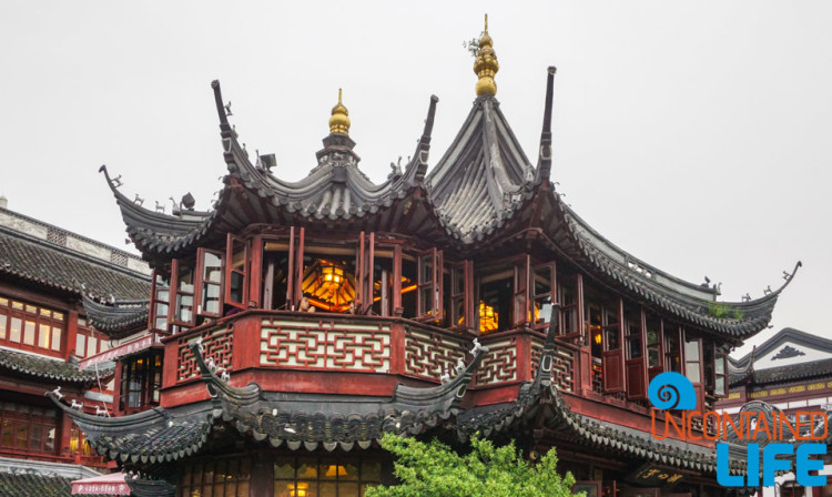 Tea House, 24 Hours in Shanghai, China, Uncontained Life