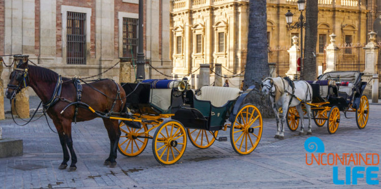 Horse Carriage, Plaza de Triunfo, Beautiful Places in Seville, Spain, Uncontained Life