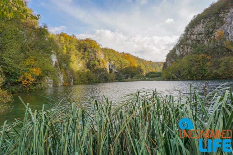 Nature, Visit Plitvice Lakes National Park, Croatia, Uncontained Life