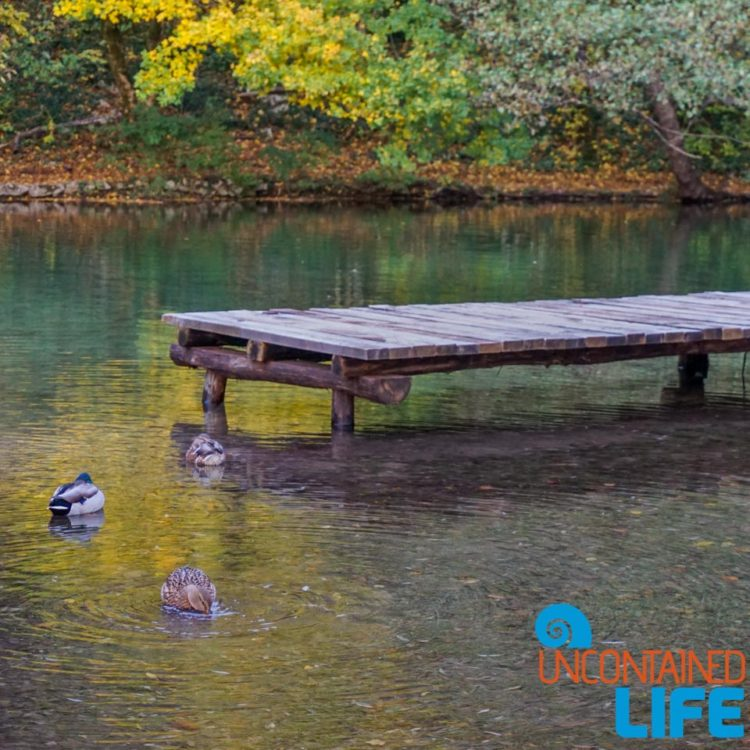 Dock, Visit Plitvice Lakes National Park, Croatia, Uncontained Life