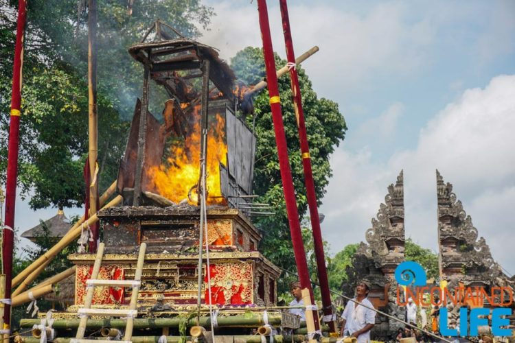 Human Cremation, Sacred Monkey Forest Sanctuary, Ubud, Bali, Indonesia, Uncontained Life