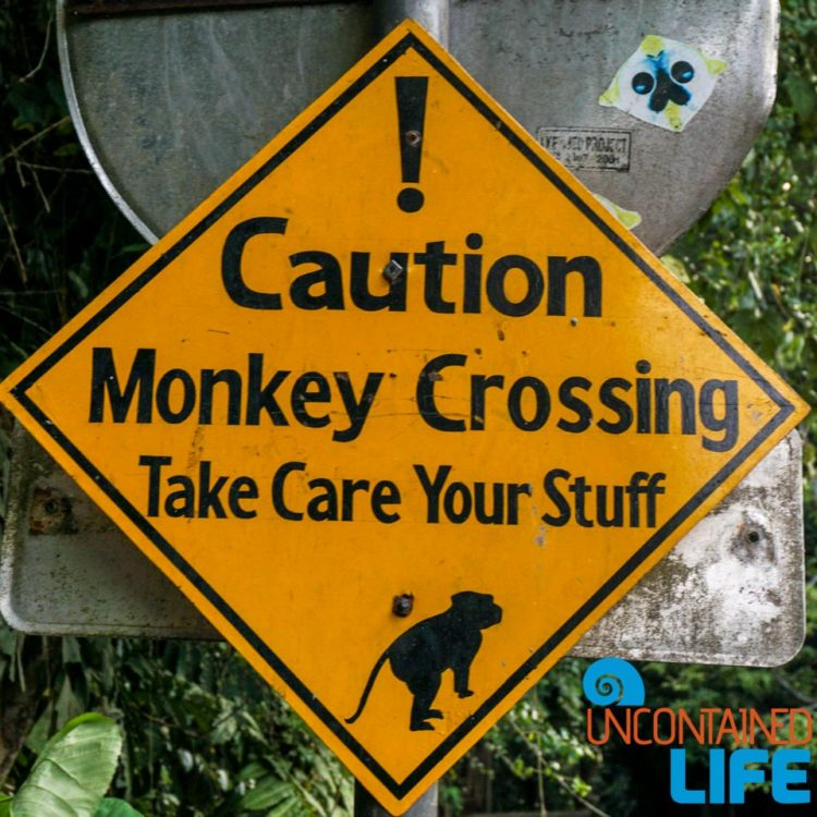 Sign, Sacred Monkey Forest Sanctuary, Ubud, Bali, Indonesia, Uncontained Life
