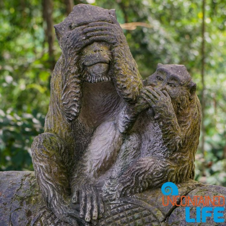 See No Evil, Speak No Evil, Sacred Monkey Forest Sanctuary, Ubud, Bali, Indonesia, Uncontained Life