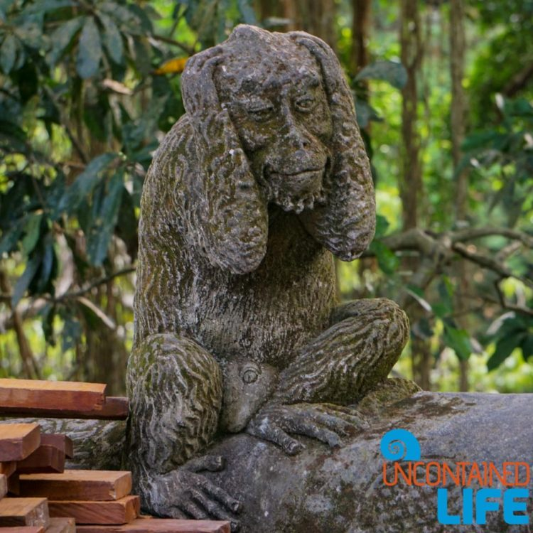 Hear No Evil, Sacred Monkey Forest Sanctuary, Ubud, Bali, Indonesia, Uncontained Life
