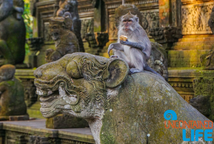 Statue, Sacred Monkey Forest Sanctuary, Ubud, Bali, Indonesia, Uncontained Life