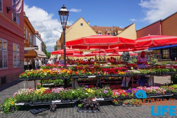 Flower Market, Visit Zagreb, Croatia, Uncontained Life