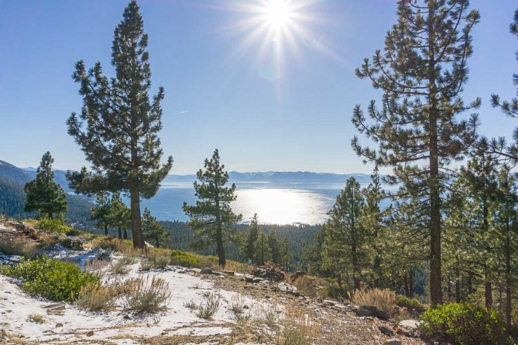 road trip to Lake Tahoe, Uncontained Life