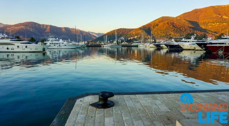 Things to do in Tivat, Montenegro, Uncontained Life