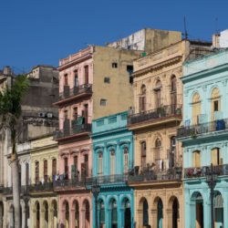 Americans visiting Havana, Cuba, Uncontained Life