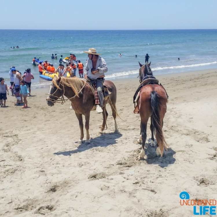 Beach, Horses, Visiting Mancora, Peru, Uncontained Life