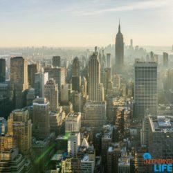 New York-1211