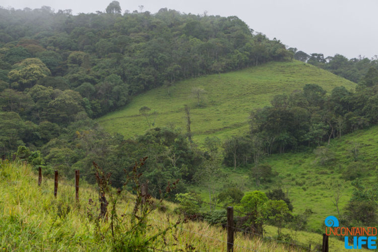 Hillside, Horseback Riding in San Agustin, Colombia, Uncontained Life