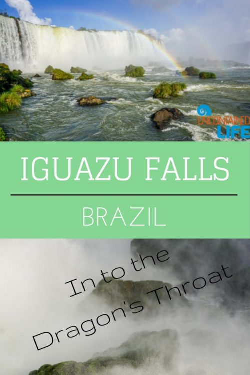 Into the Dragon's Throat, Iguazu Falls, Brazil, Uncontained Life
