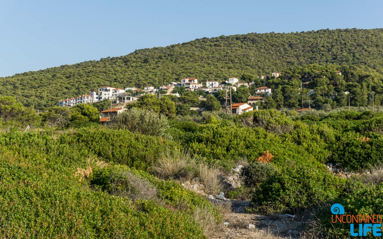 Green Foliage, Visit Agistri, Greece, Uncontained Life