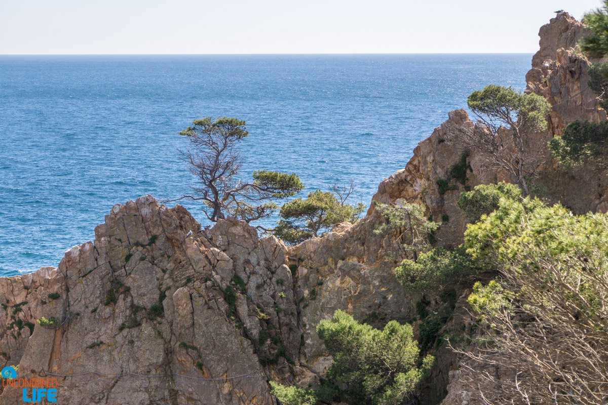 Cliffs, Hiking in Costa Brava, Spain, Uncontained Life