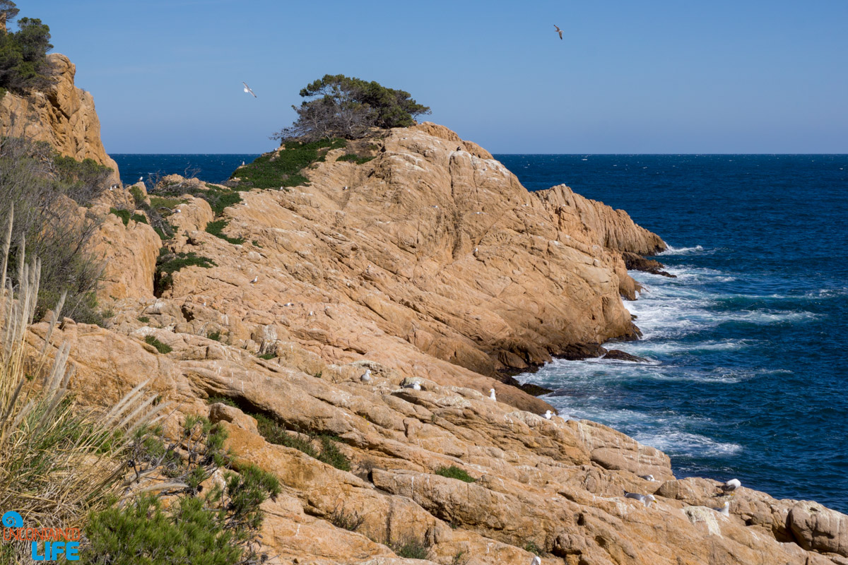 Punta del Molar, Hiking in Costa Brava, Spain, Uncontained Life
